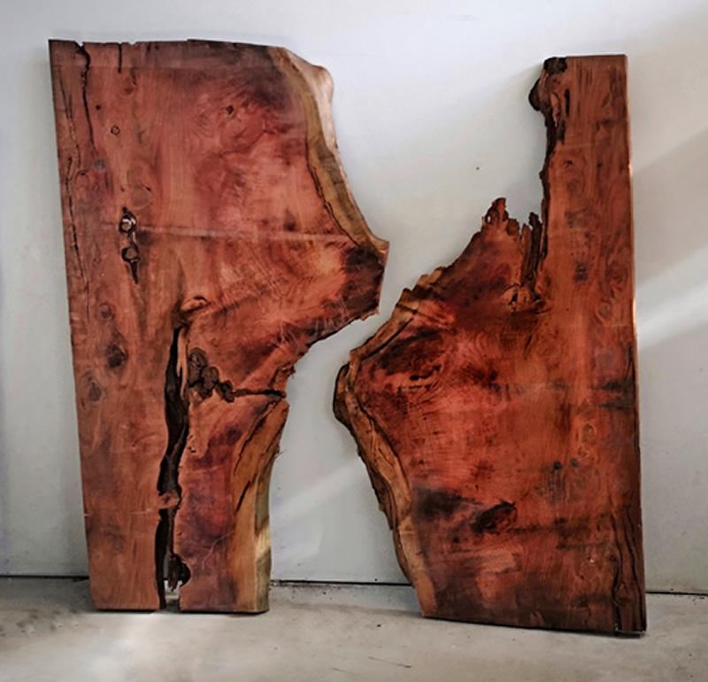 Pièces de bois hors normes Salvateur