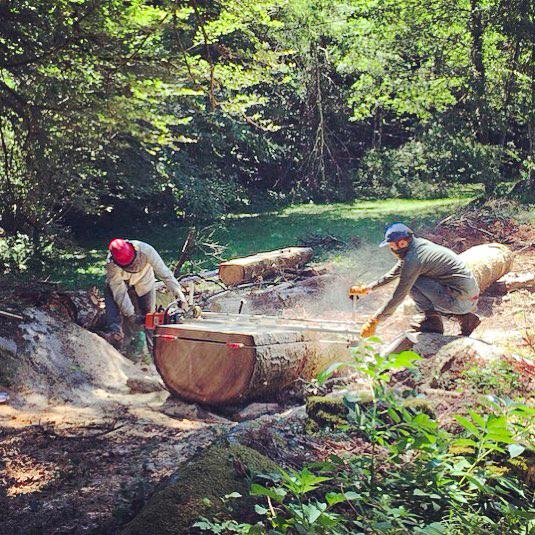 Découpe du bois sur le terrain - Salvateur