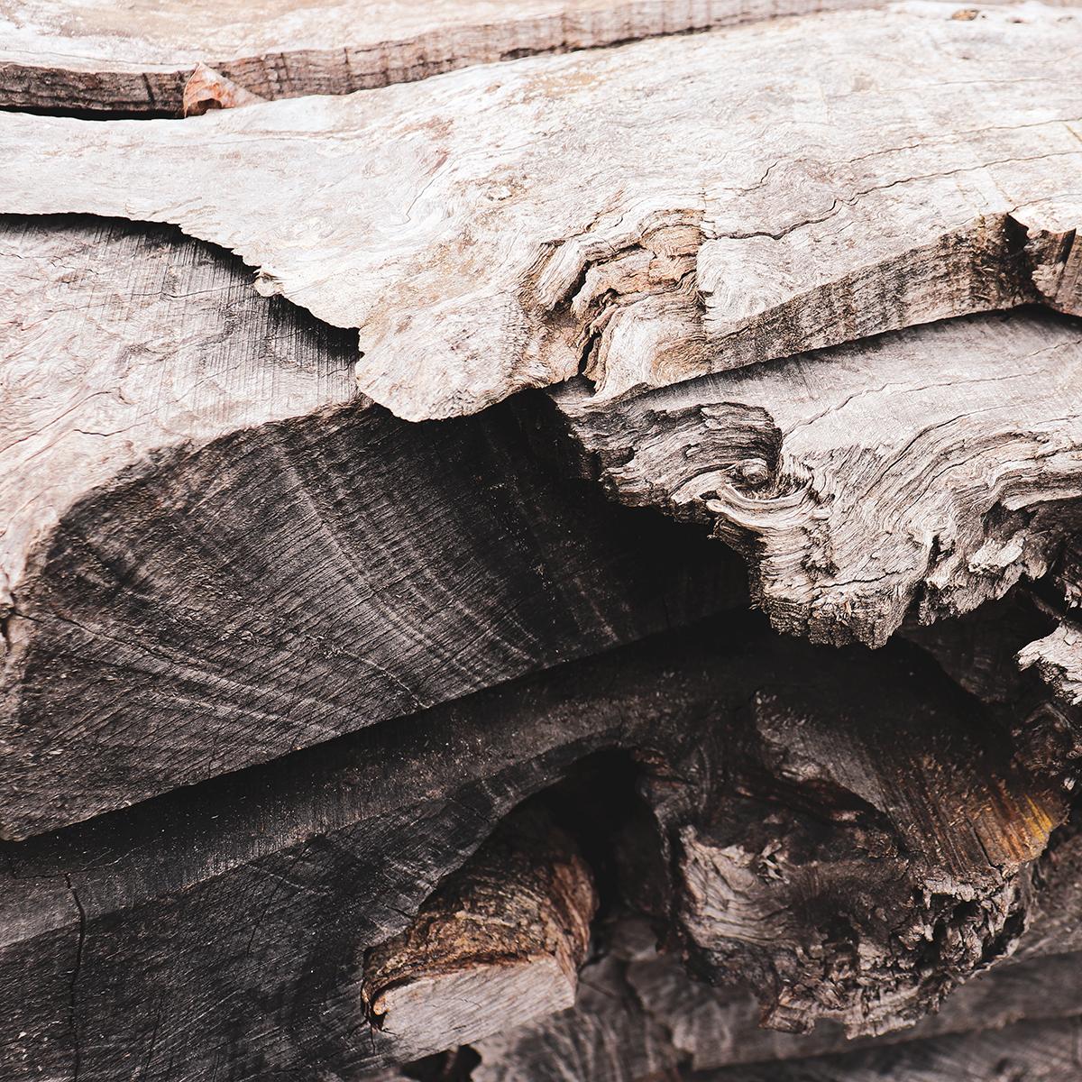 Séchage du bois - Salvateur