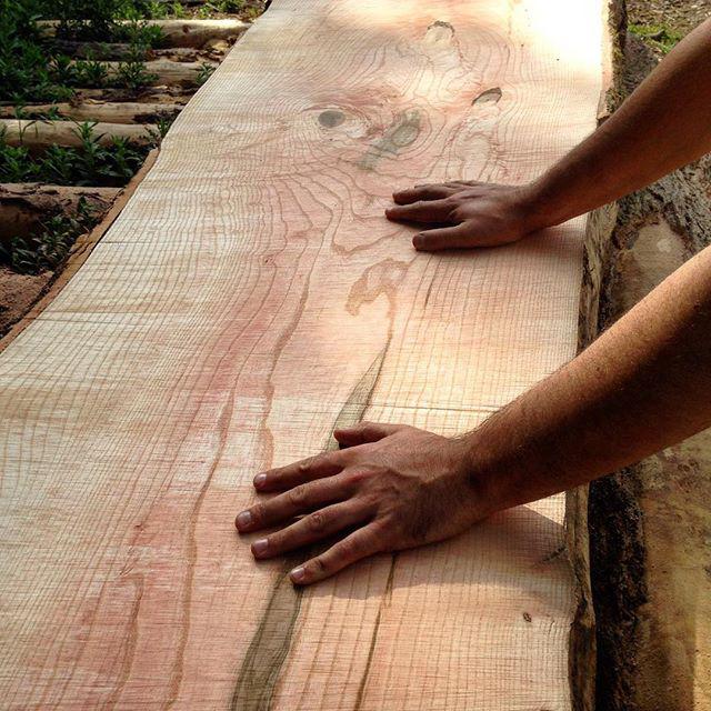 Travail du bois - Démarche écoresponsable - Salvateur