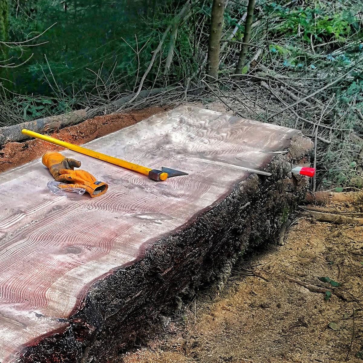 Essence de bois Douglas - Mobilier sur mesure - Salvateur